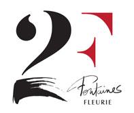 logo Domaine des 2 Fontaines, Domaine des 2 Fontaines